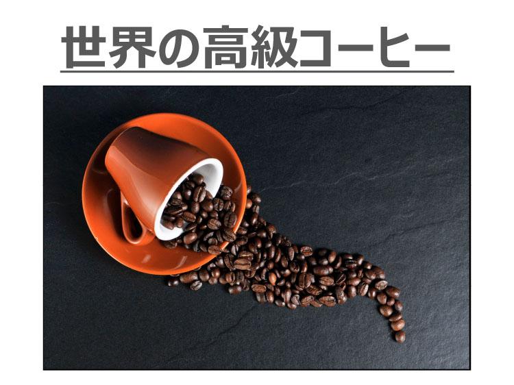 世界の高級コーヒー